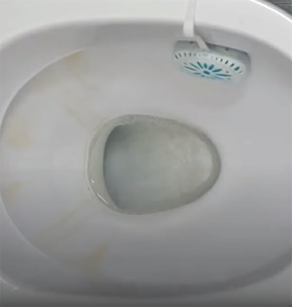 garlic, cleaning trick, toilet